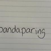 Pandaparing is het woord van de week